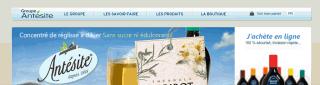 antesite.com